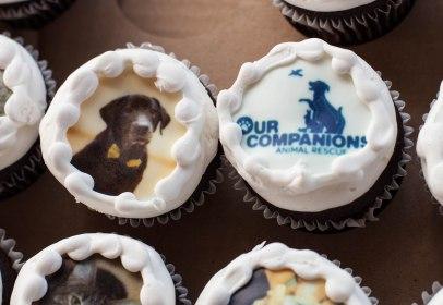 OC 3rd bday cupcakes 2