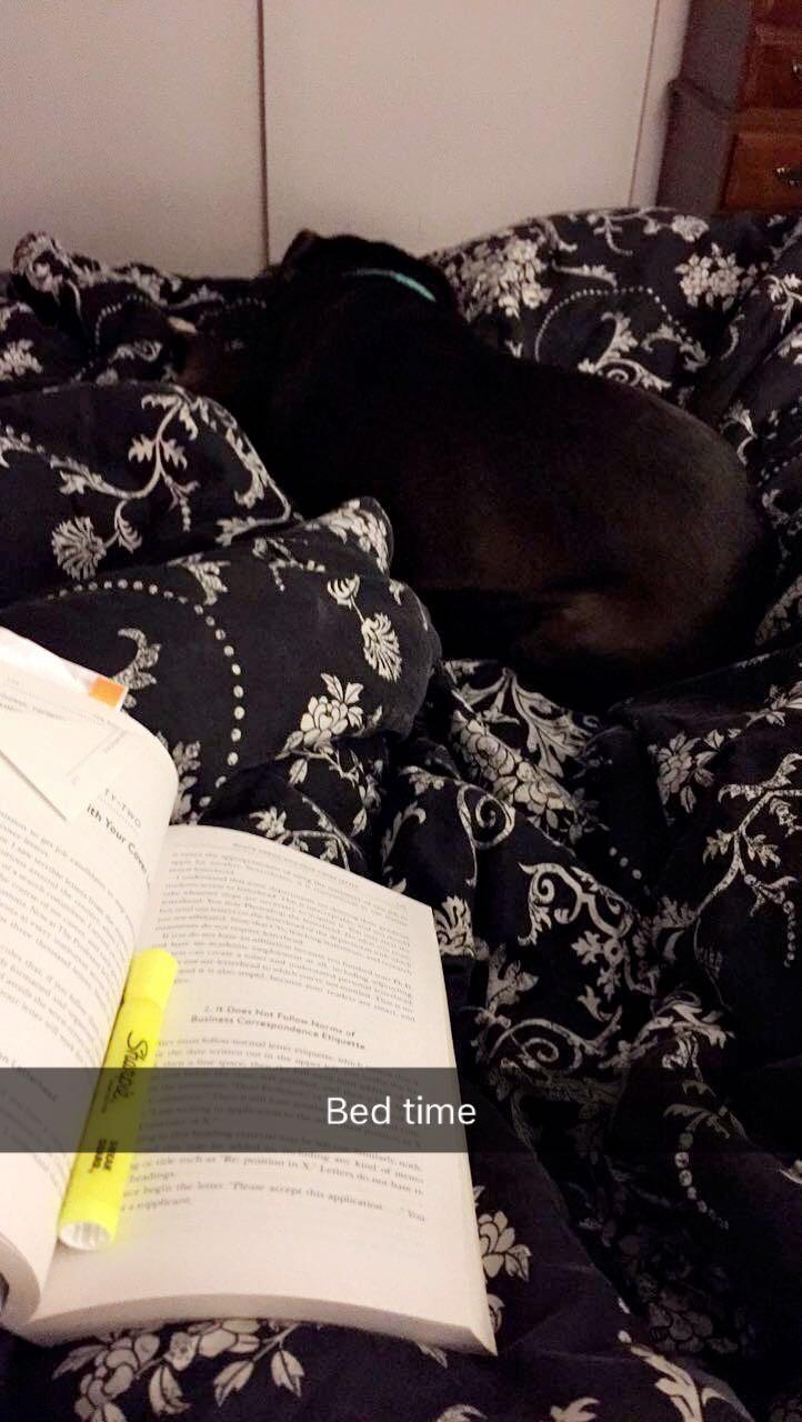 Lucy Sleeping