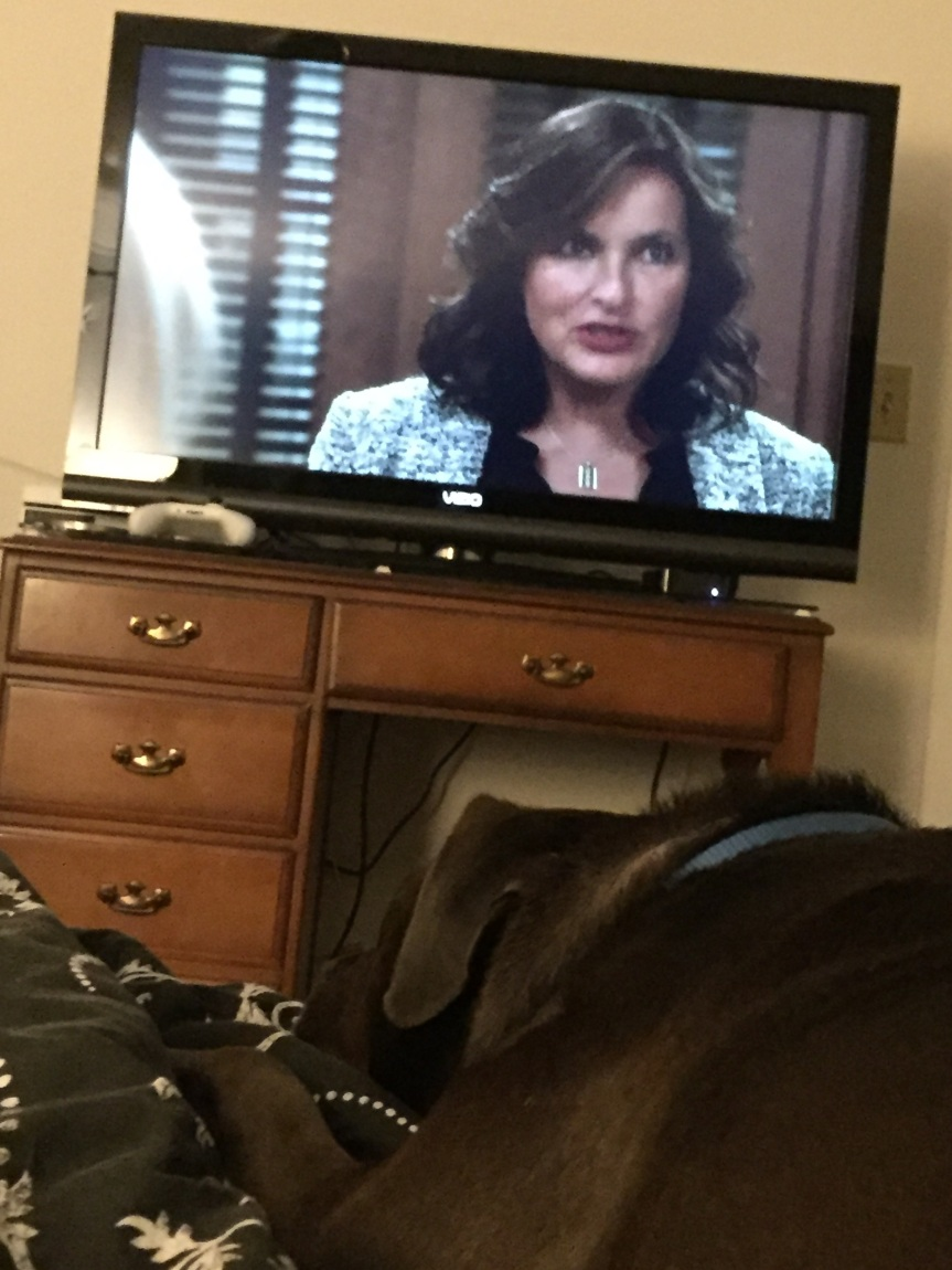 Lucy watching SVU